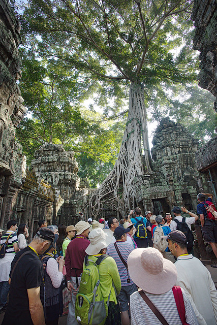 "Everybody trying to catch a glimpse of the ""Tomb Raider"" tree at Ta Prohm."