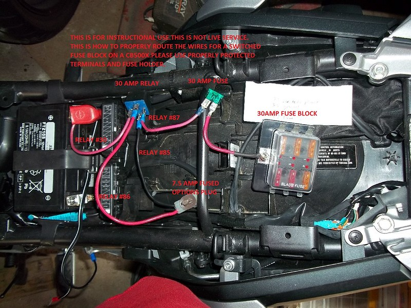 honda today 50 wiring diagram network interface device op (options plug) connector confusion,lets resolve it. - page 6 lighting, electrical, and ...