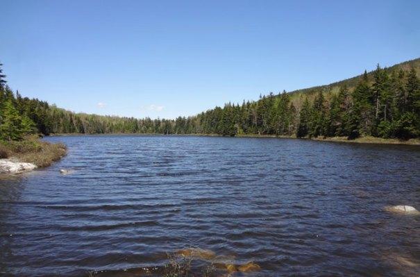 Page Pond AT NH