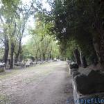 Viajefilos en Arles 021