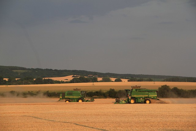 Harvesting with Combines