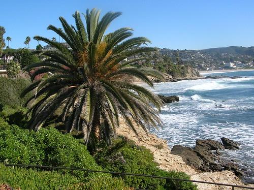 MORE Laguna Beach by Martina