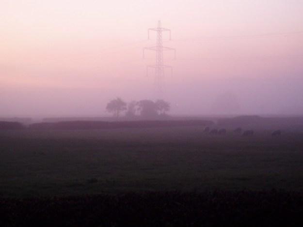 Foggy November