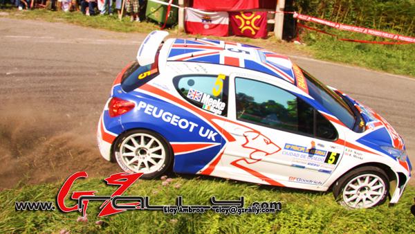 rally_principe_de_asturias_17_20150303_1174042106