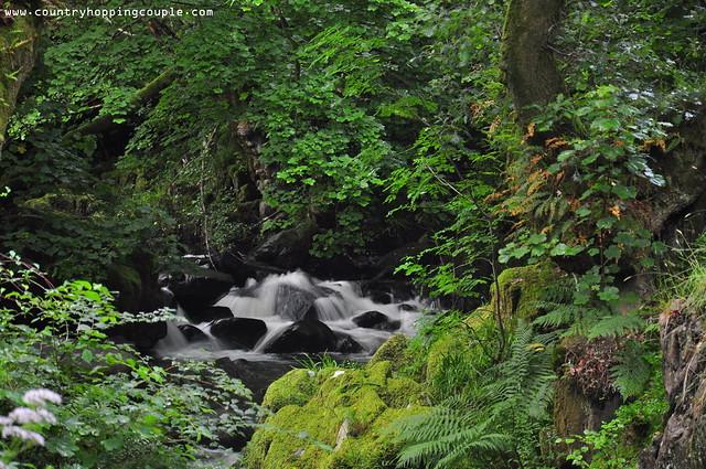 Aira Force Waterfall Walk 6