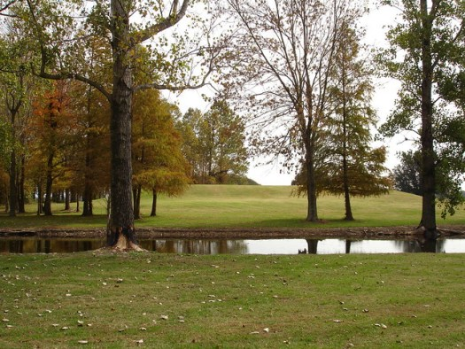 Winterville Mounds, Near Greenville MS