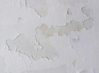 peeling ceiling | Flickr - Photo Sharing!