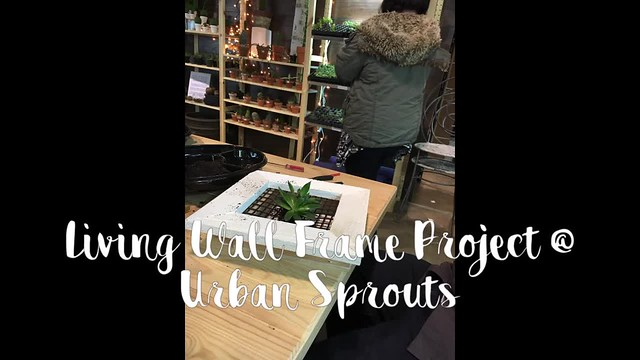 Living Wall Frame Project