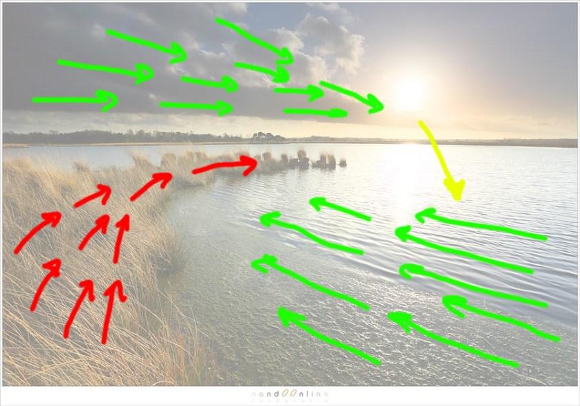 Lijnen in de foto bepalen hoe de kijkrichting door een foto is. Met de uitleg van Bruce Percy als richtlijn heb ik geprobeerd om de mogelijke kijklijnen weer te geven