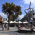 Viajefilos en Australia. Sydney  176