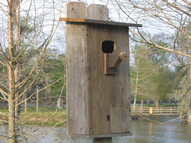 Wood Duck House  Flickr  Photo Sharing