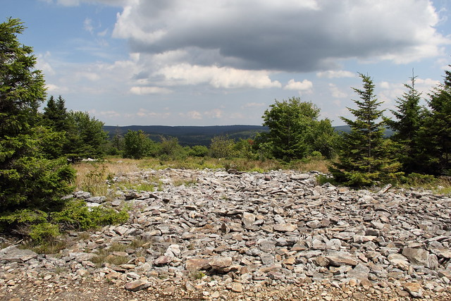 20150725_Dolly_Sods_016