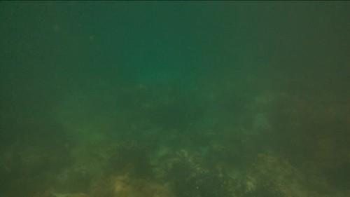 La última de corales en las Filipinas, en Boracay