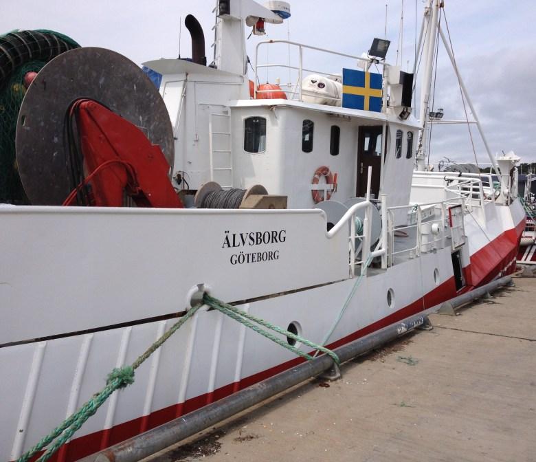 fiskeback12juli_2015-2 - 5