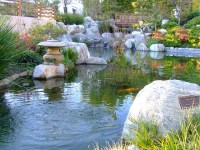 2006_01200011 | Cal Poly Japanese Garden | By ...