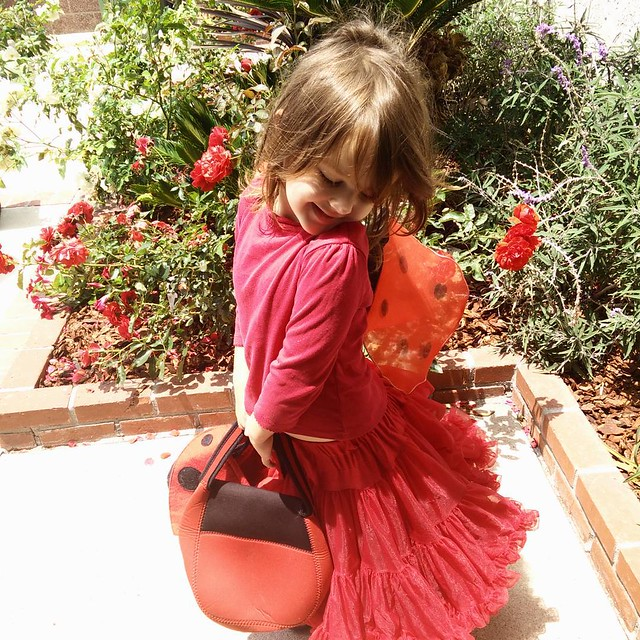 It's amazing what you can find in the garage! I have been cleaning out the garage today and found all the things you need for a Ladybug Girl costume... Fiona is obsessed with all things Ladybug girl  - talk about sparking joy! :-) #konmarimethod #ladybugg