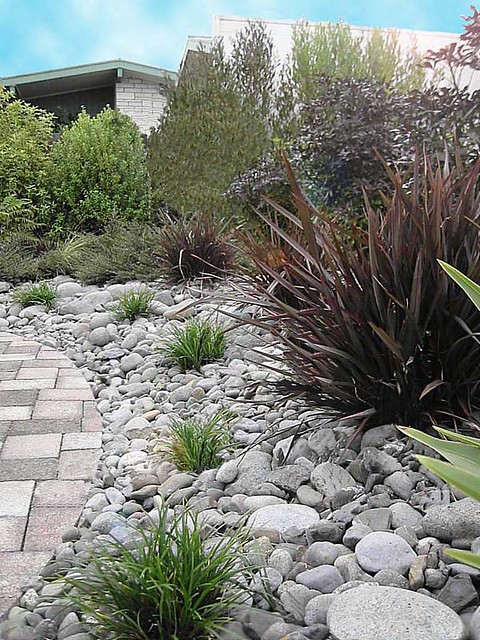 Dry Garden Ideas Garden Home Other Dry River Bed Landscaping Ideas