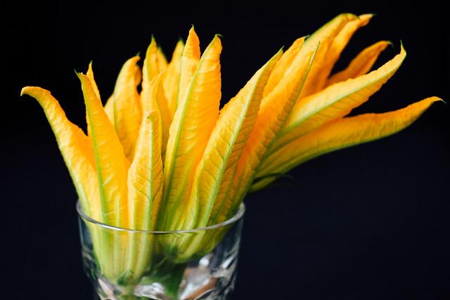 Courgettebloemen om te vullen met mozzarella, ansjovis en basilicum