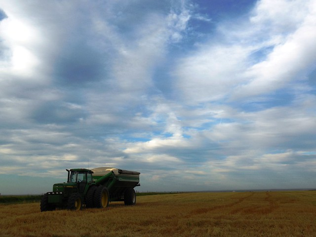 Grain cart waiting