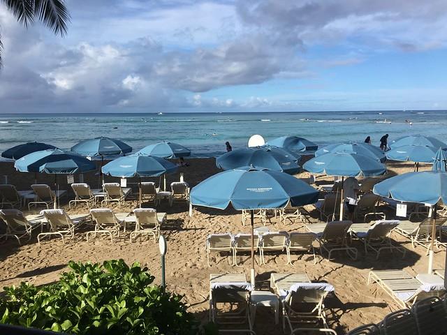 Westin Moana Surfrider - Piscine et plage