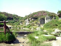 Hay Tor quarry