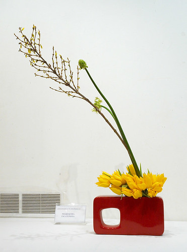 ikebana by Gingertail