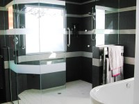 High Tech Shower | The walk-in shower and free-standing ...