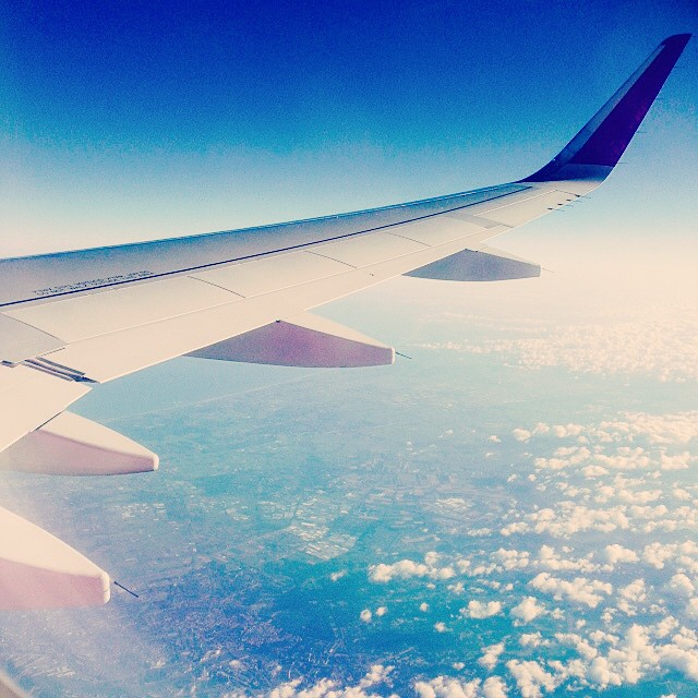 Morning Flight Home