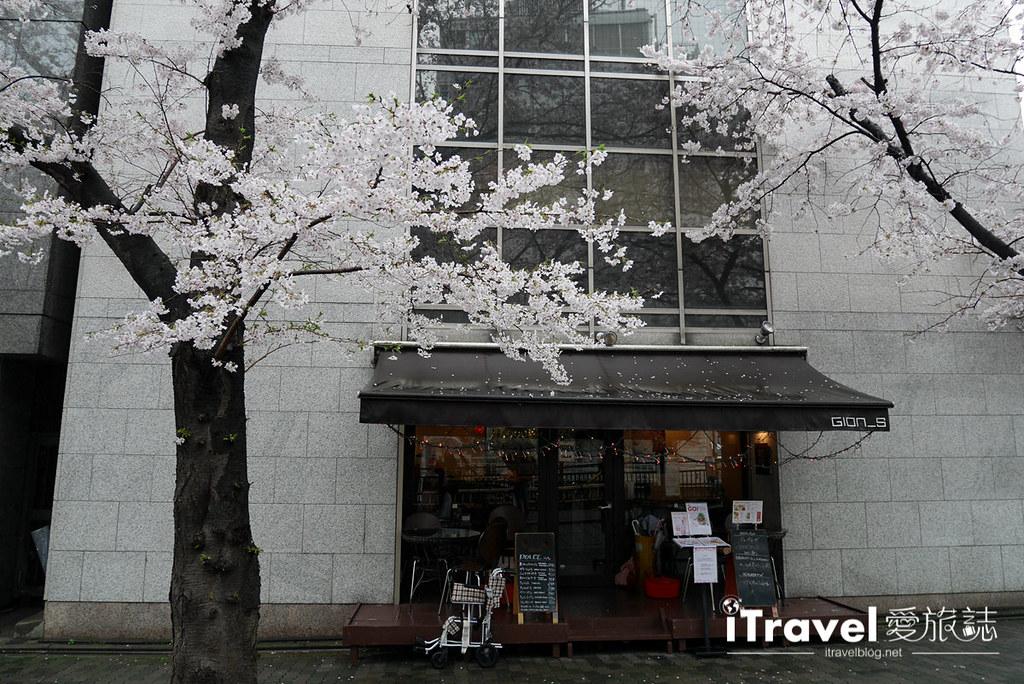 京都赏樱景点 祇园白川 (13)