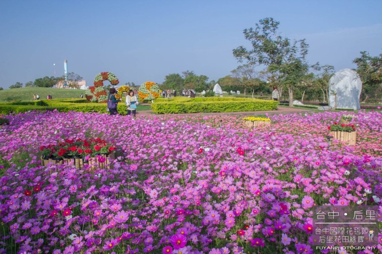 台中國際花毯節52