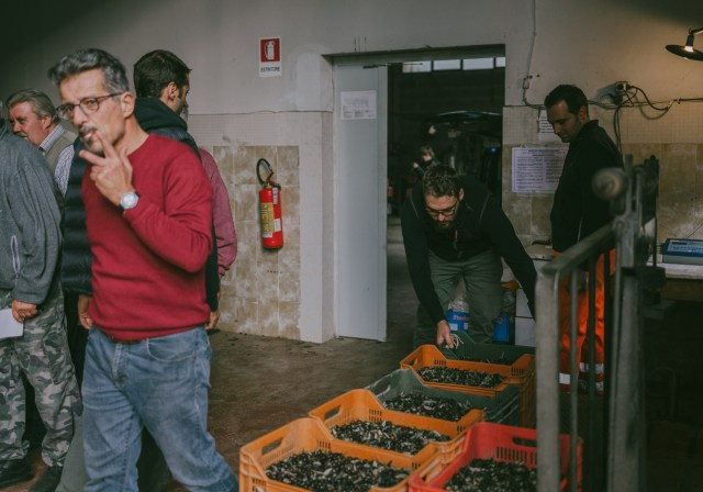olivenölmühle_JuliaSangNguyen-8