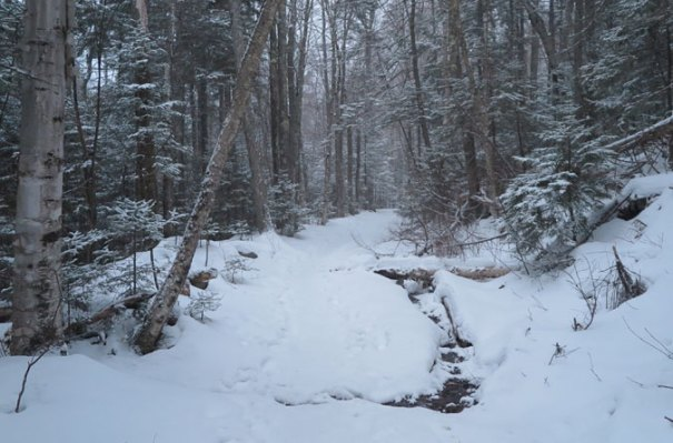 Hancock Notch Trail Winter