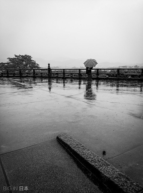 Visitante solitario en el Mirador de Hōrin-ji