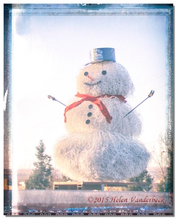 Tumbleweed Snowman