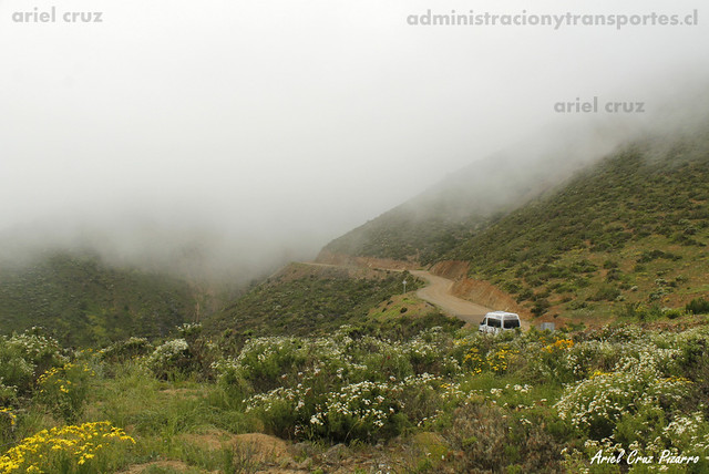 Desierto Florido - Cordillera de la Costa - Nube orográfica