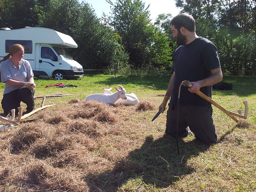 sharpening scythes with goats