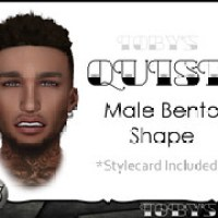 QUISE Male Bento Shape