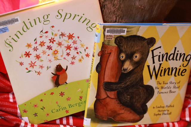 Bear Cub Book Pair