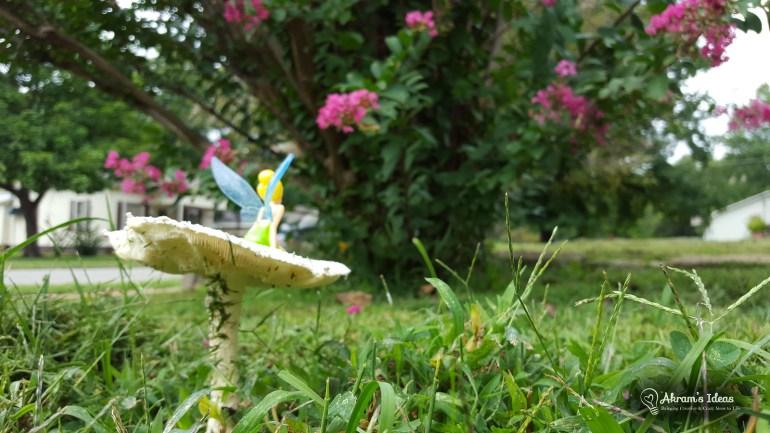 Mushroom Fairy 001