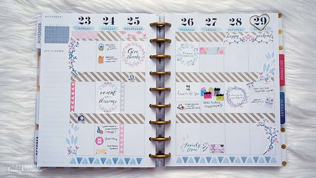 Plan With Me Week 48