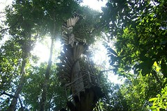 'Rickety Tree House' by CmdrGravy on Flickr