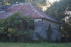031 Abandoned School