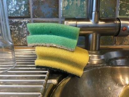 Dirty sponges