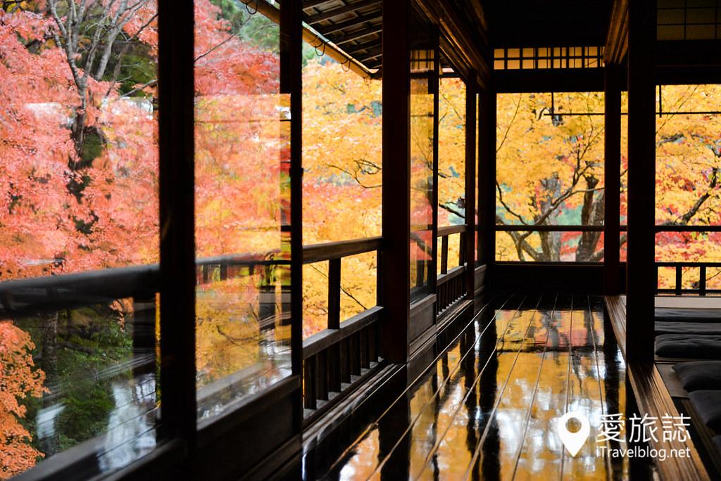 京都賞楓景點 琉璃光院 15