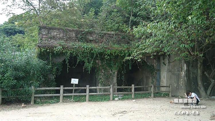 大久野島54