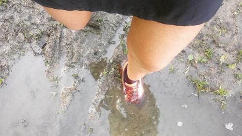 Vandaag was het perfect weer om die trailschoenen uit te testen. Serieus modderig met een stralend zonneke #trailrunning #teamdecathlon #iloverunning #instarunbe #nevernotrunning