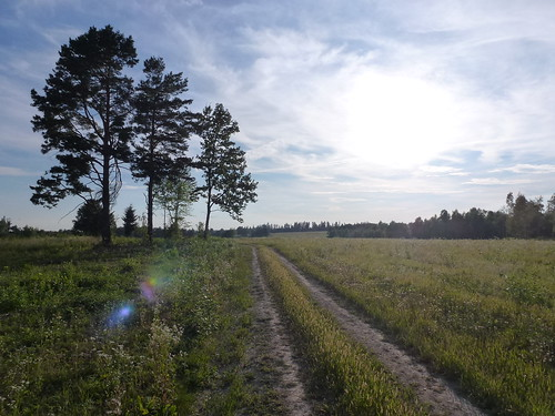 Słońce ponad łąkami nad Kotowem by Polek