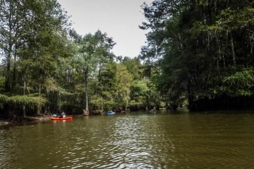 Sparkleberry Swamp with LCU-94