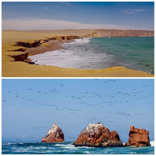 Parque Nacional Paracas
