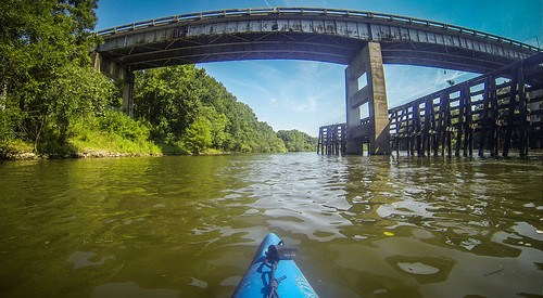 Savannah River Paddling-162